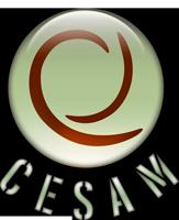 CESAM Formation